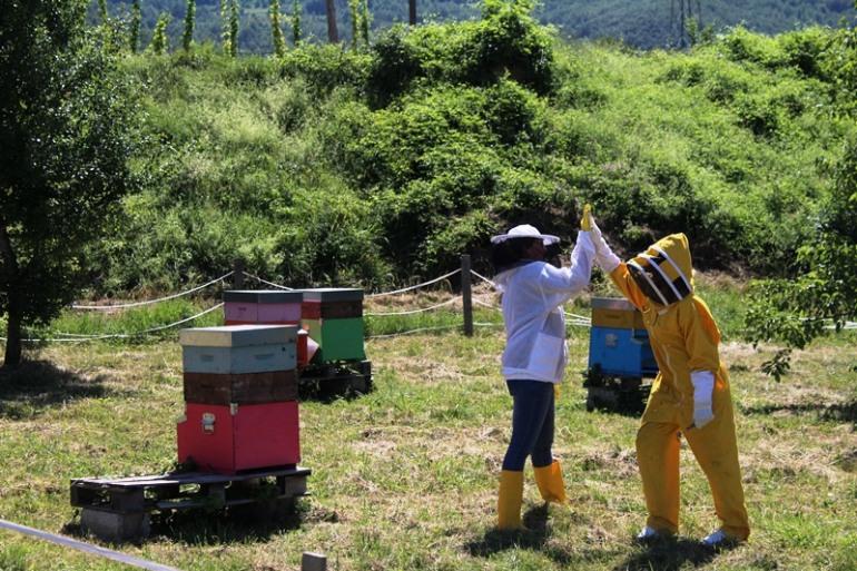 L'Apiario di Comunità di Castel del Giudice  presenta il suo primo miele in adunanza generale