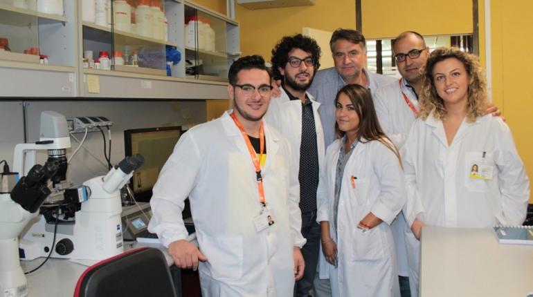Neuromed, un nuovo approccio farmacologico contro le complicazioni vascolari nei diabetici