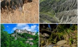 """Abruzzo, Wwf: """"Riserve regionali fortezze per ambiente ed economia"""""""