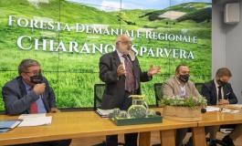 Foresta Demaniale Chiarano Sparvera verra gestita dal Parco Nazionale d'Abruzzo, Lazio e Molise