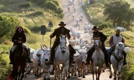 Si firma in Abruzzo l'accordo sui tratturi e la transumanza