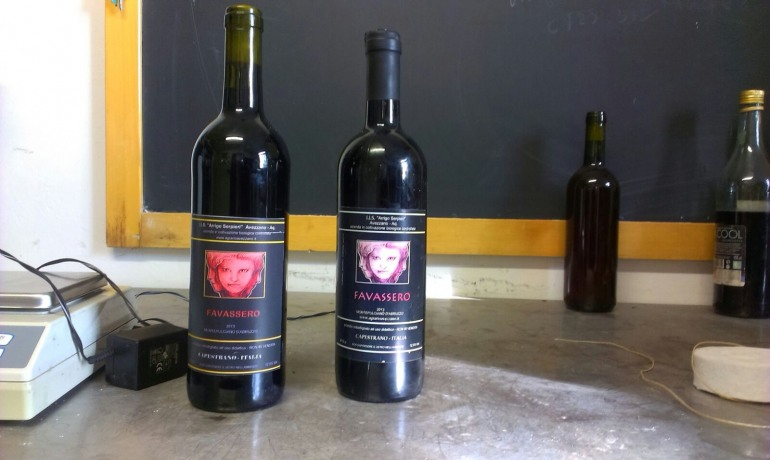 Castel di Sangro, gli studenti dell'Agrario 'Sepieri' eccellenti produttori di vino