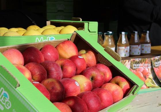 """Castel del Giudice celebra la """"Melise"""", il frutto autoctono dell'Alto Molise"""