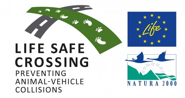 """Pescasseroli, presentazione di """"Life Safe Crossing"""": come ridurre il rischio d'investimenti della fauna selvativa"""