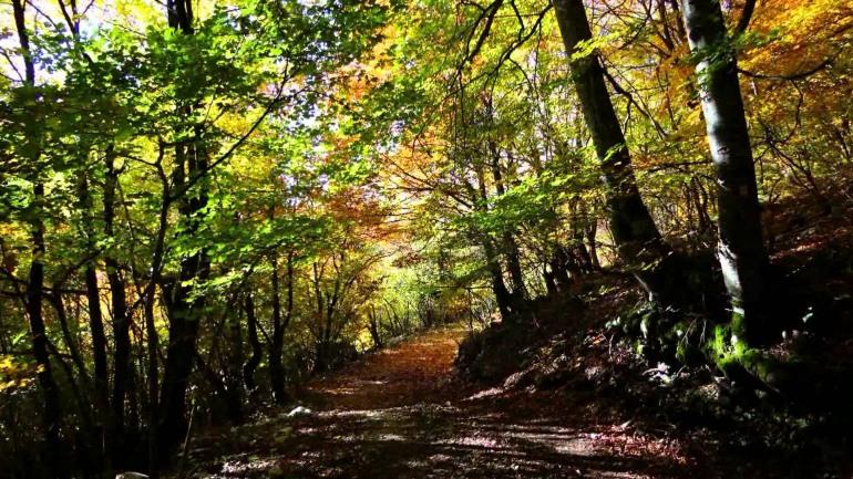 Altosangroescursioni, trekking su ventisei itinerari del Parco d'Abruzzo