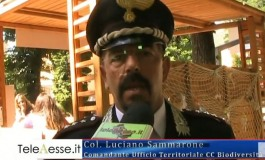 """Il capracottese Luciano Sammarone nominato direttore del PNALM. Candido Paglione: """"La persona giusta al posto giusto"""""""