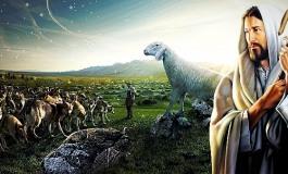 """Gesù ai discepoli: """"Andate, vi mando come agnelli in mezzo ai lupi"""""""
