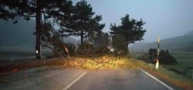 Traffico in tilt, il vento sradica alberi sul Piano delle Cinquemiglia e a Castel di Sangro
