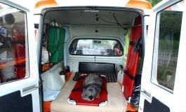 Tutti giù per terra - Il cane sta male: arriva l'ambulanza