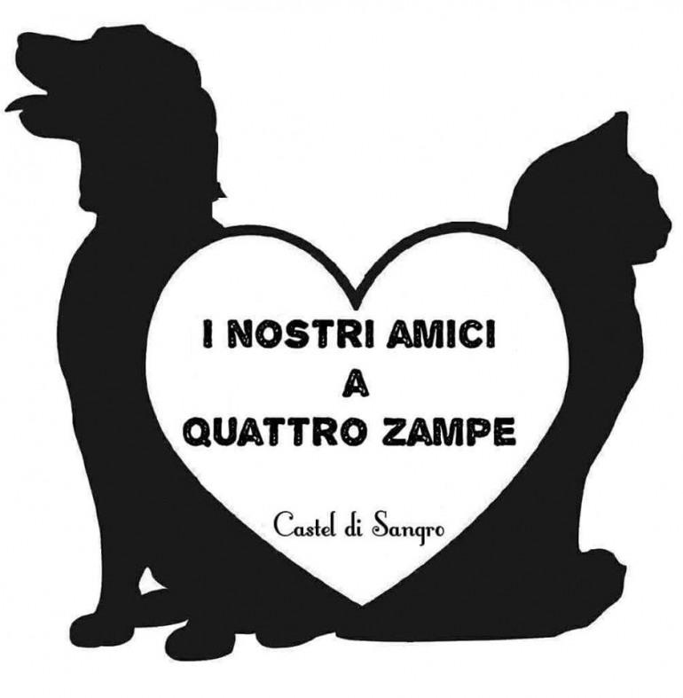 Castel di Sangro, aiutiamo cani e gatti abbandonati: colletta alimentare, 20 e 21 agosto