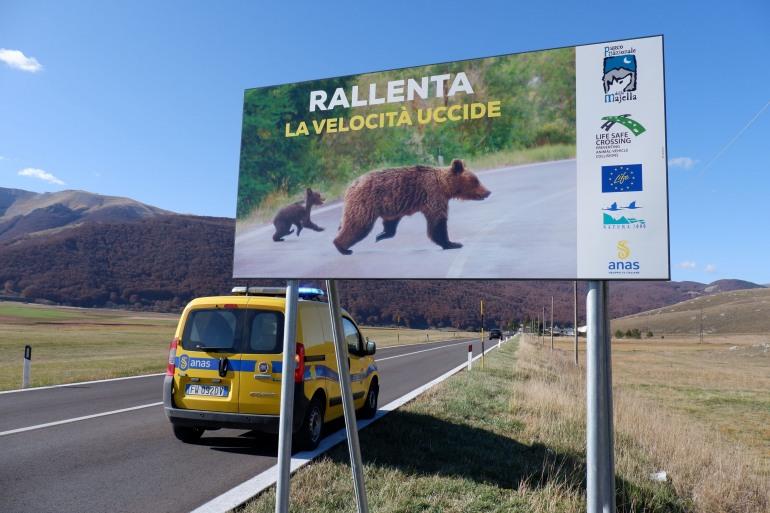 Parco Nazionale della Majella e Anas, impedire incidenti con animali selvatici