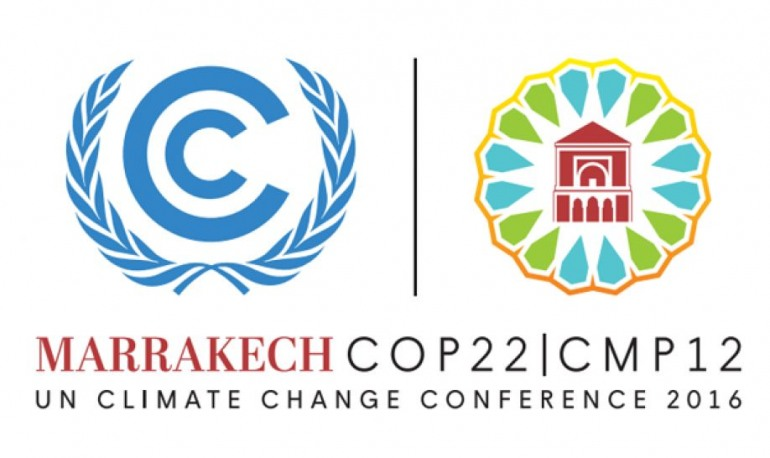 Studio del WWF per eliminare l'uso del carbone in Italia