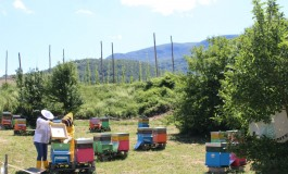 Arnie Narranti a Castel del Giudice, si celebra la biodiversità culturale