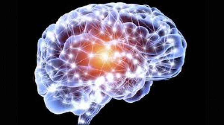 Neuromed, inizia la settimana della ricerca per conoscere il cervello