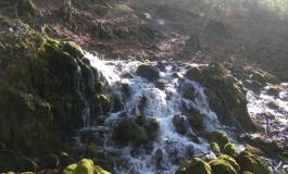 Passeggiata da Opi a Val Fondillo sul Regio Tratturo tra poesie, narrazioni e canti