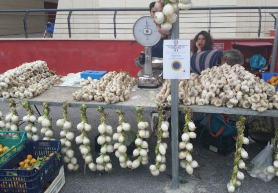 Appuntamento con la tradizione, a Isernia si avvicina la fiera delle cipolle