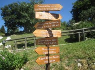 Capracotta, due giorni di festa per il 55° anniversario del giardino della flora appenninica
