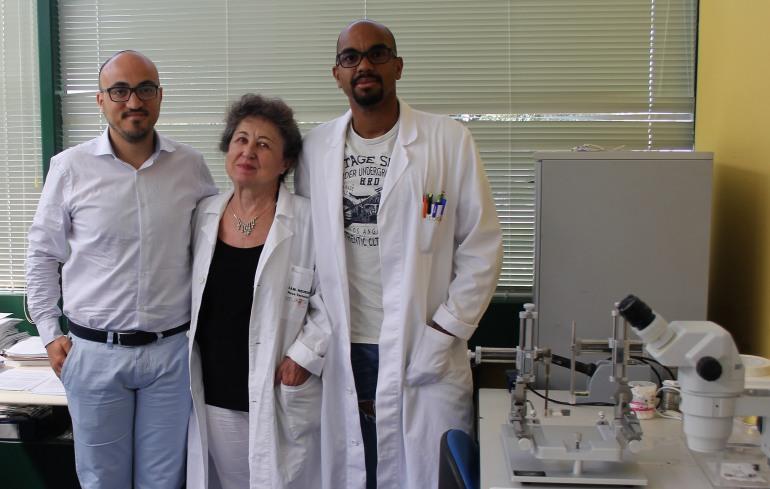 Nanotubi di carbonio per le interfacce cervello-computer del futuro: studio scientifico di Neuromed