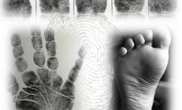 La scena del crimine: le impronte papillari e la loro utilità