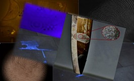 La scena del crimine: L'evidenziazione delle impronte papillari