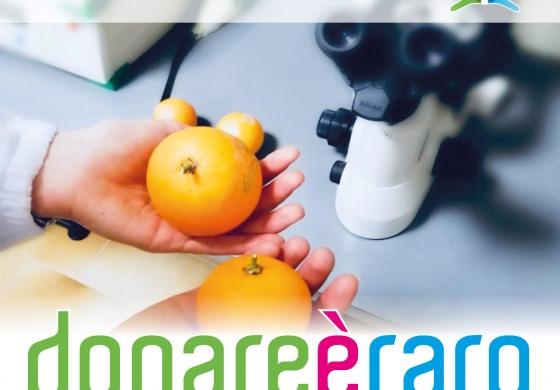 Giornata mondiale delle malattie rare: ricercatori e clinici Neuromed promuovono incontri con i cittadini