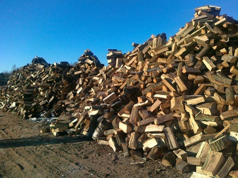Alfedena, la protesta dei cittadini: Perchè non ci consegnano la legna?