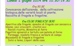 Castel di Sangro, festival della fragola alla Masseria San Iorio