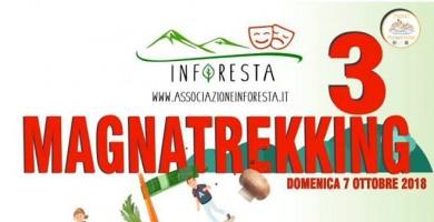 Escursione con 'Inforesta', si parte per il magnatrekking: domenica 7 ottobre