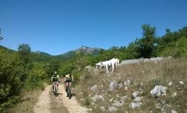 Al via le iscrizioni per la 'Mainarde bike tour'