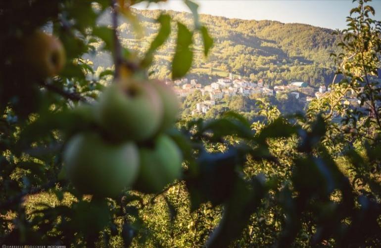 Prima festa della mela a Castel del Giudice: domenica 14 ottobre