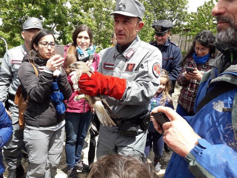 Riapertura visite guidate Oasi WWF Guardiaregia-Campochiaro