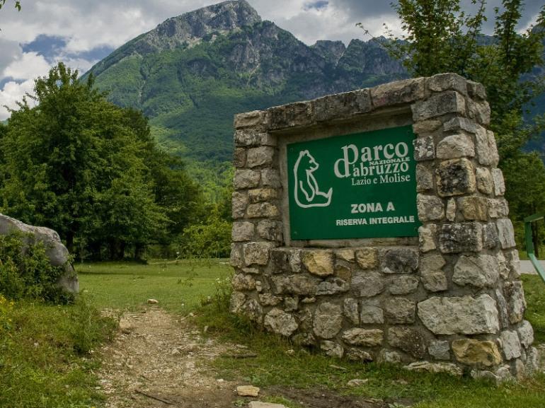Pnalm, annullate le prove su coturnice nell'areale dell'Orso. Wwf Abruzzo Montano ringrazia