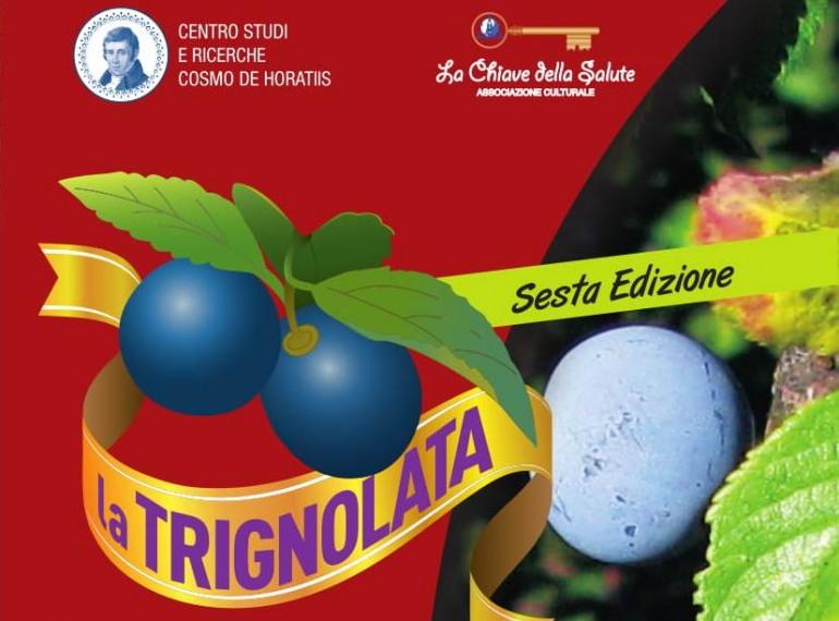 Bagnoli del Trigno, Domus Area: 6^ edizione della 'Trignolata'