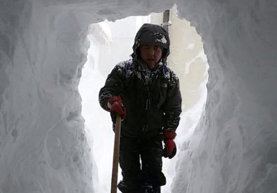 Sepolti dalla neve in Alto Molise. Volontari all'opera a Pescopennataro