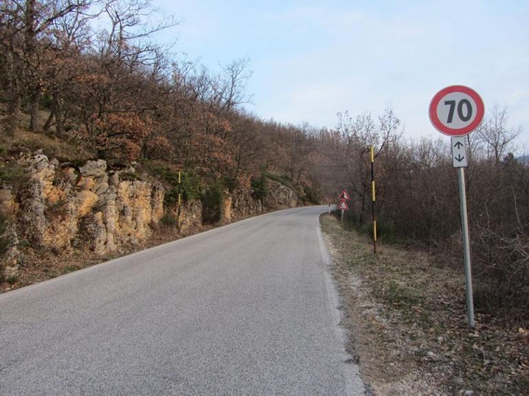 """'Salviamo l'Orso': """" si rispettino i limiti di velocità sulle strade del Pnalm"""""""