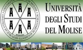 Campobasso, alta formazione manageriale in sanità: all'Unimol i partecipanti anche dall'Abruzzo