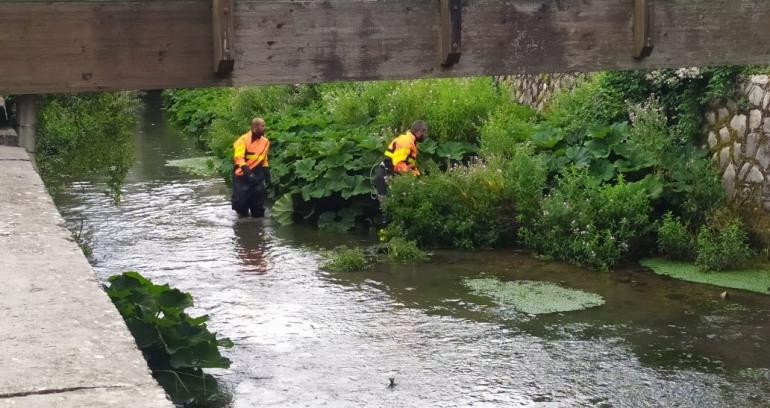 Castel di Sangro, due cani finiscono dentro al fiume: salvati dai Vigili del Fuoco