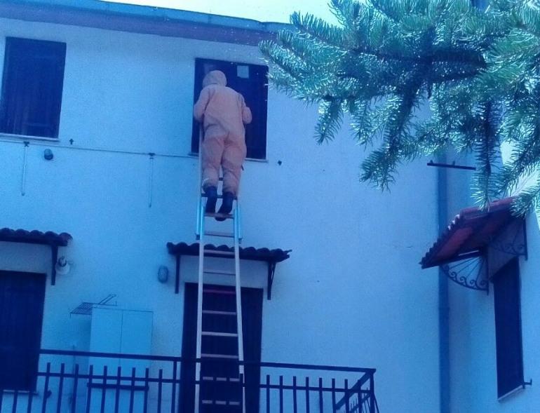 Centralino dei Vigili del fuoco in tilt: emergenza vespe