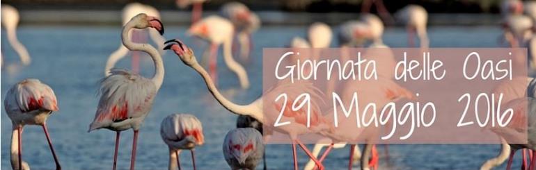 Giornata oasi Wwf, l'Abruzzo mette in mostra5 gioielli