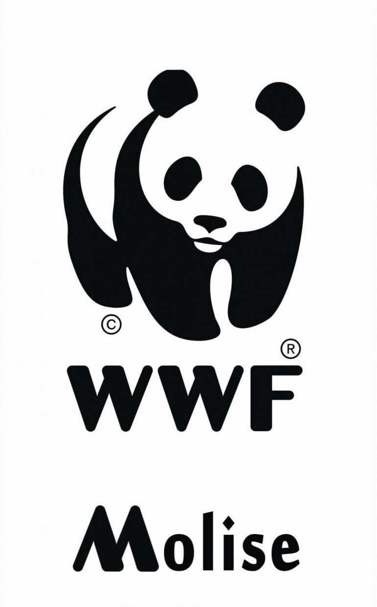 """WWF Molise: clima in pericolo, aderiamo alla campagna """"Ora Polare"""""""