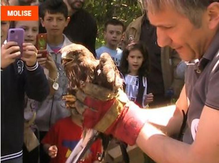 Festa Oasi wwf, in Molise apre Guardiaregia- Campochiaro